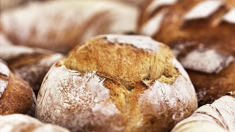 INNOVATIVE FOOD PRODUCTS - VERIPAN AG